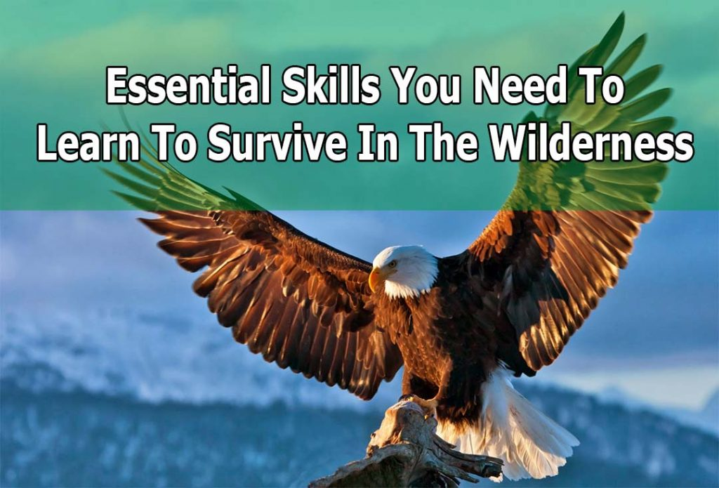basic survival skills