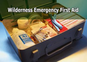 Wilderness emergency medicine first aid