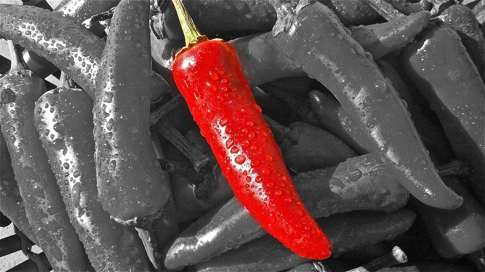 how to make home made pepper spray using chili