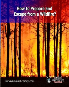 How to Prepare and Escape from a Wildfire